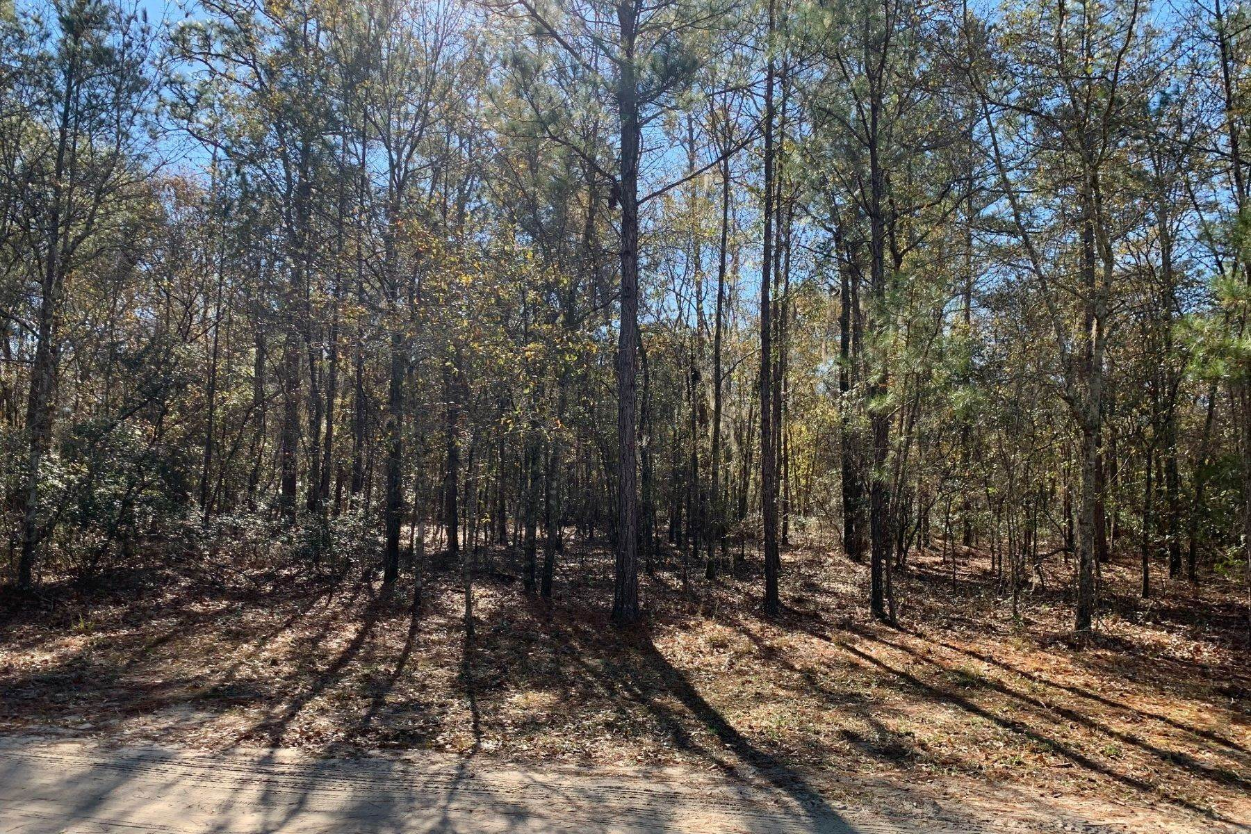 3. Land for Sale at Pine Forest Loop Ridgeland, South Carolina 29936 United States